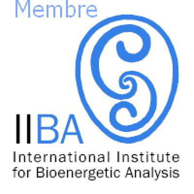logo IIBA Membre